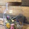 droogbloemen in pot