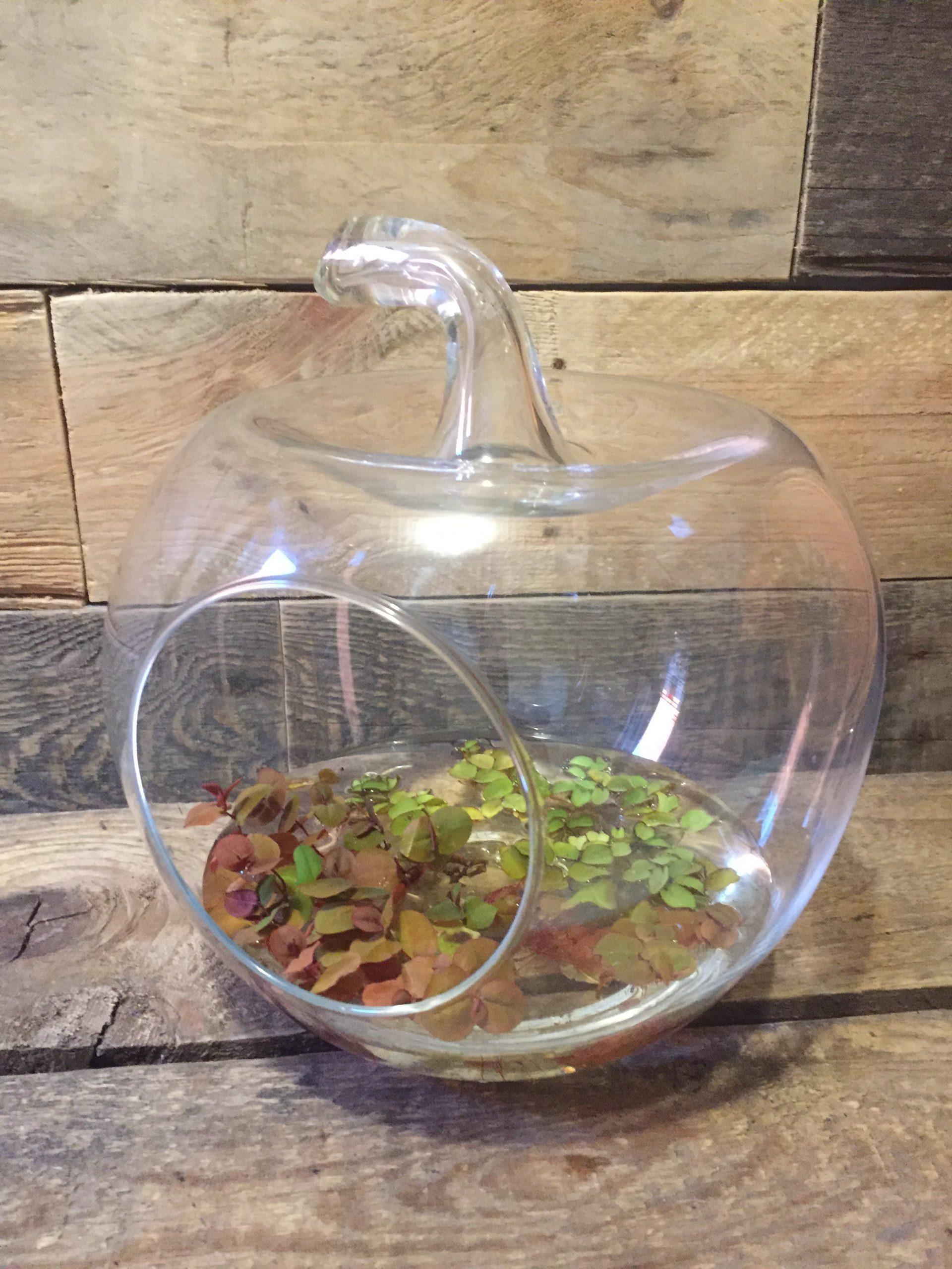 vintage www.queensbrocanteboutique.nl appel glas seventiesinrichting groen brocante